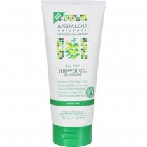 Andalou Naturals - Aloe Mint Cooling Shower Gel (Pack of 2 - 8.5 FZ)